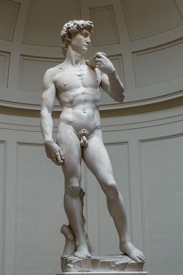 audioguida David di Michelangelo